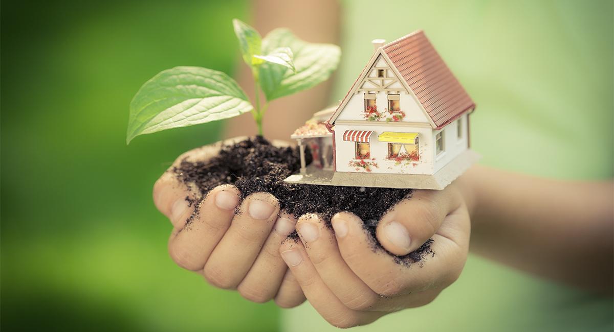 Какие окна нужны деревянному дому?